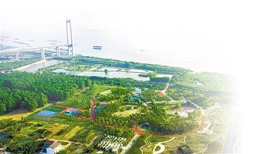 泰州永安洲镇 高卫东摄 视觉江苏网供图