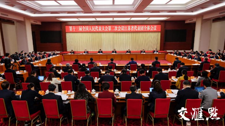 江苏代表团举行全体会议审议人大常委会工作报告
