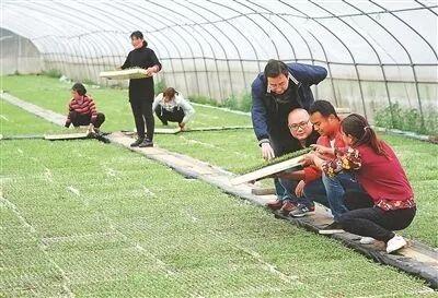 江苏、陕西两省密切协作,共同落实中央赋予的重大政治责任