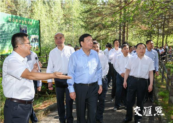 江苏省党政代表团考察榆林红石峡沙地植物园樟子松种植基地。