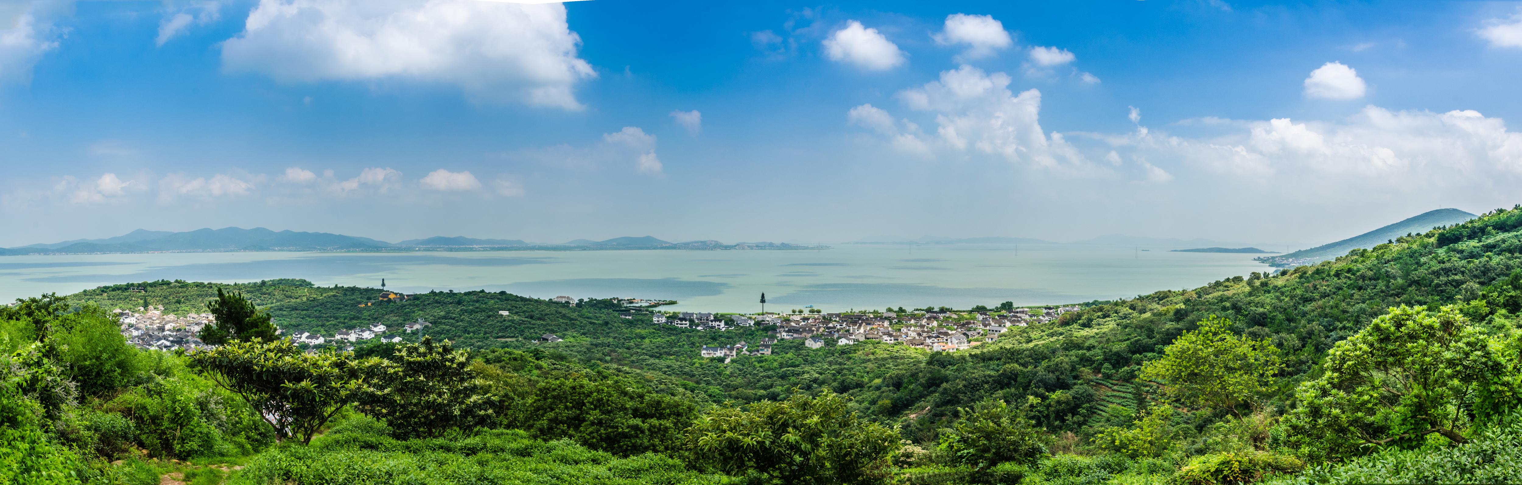 吳中碧螺春茶果間作與太湖生態景觀